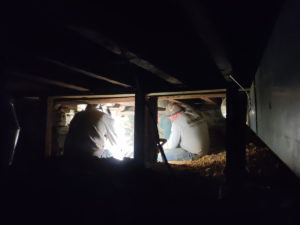 SSRG team in crawl space